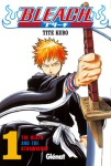 Bleach (72 tomos, serie abierta)